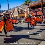 Palm-Springs-2015-1516