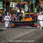 Palm-Springs-2015-1658